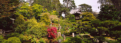 Cottage In A Park, Japanese Tea Garden Art Print by Panoramic Images