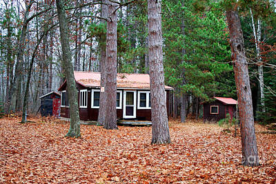 Photograph - Cottage In Woods by Ms Judi