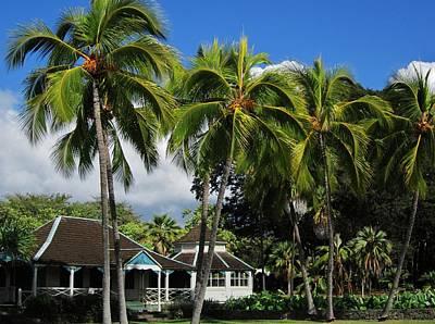 Cottage Of Kamehameha The V Art Print by Craig Wood