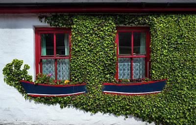 Cottage Windows, Kinsale,county Cork Art Print