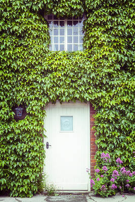Cottage With Ivy Art Print