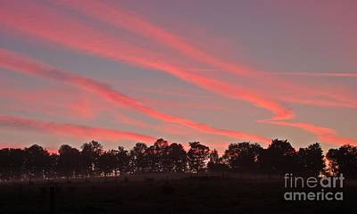 Photograph - Cotton Candy Sunrise by Christian Mattison