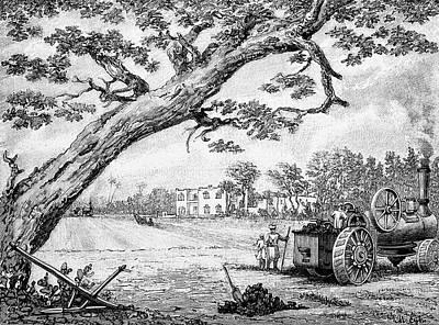 Cotton Plantation Art Print