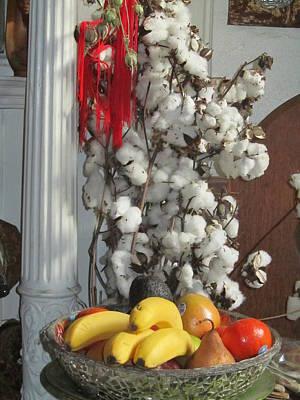 Cotton Art Print by Stephanie Francis