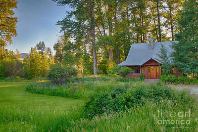 Digital Art - Cottonwood Cottage With Spring Lupine by Omaste Witkowski