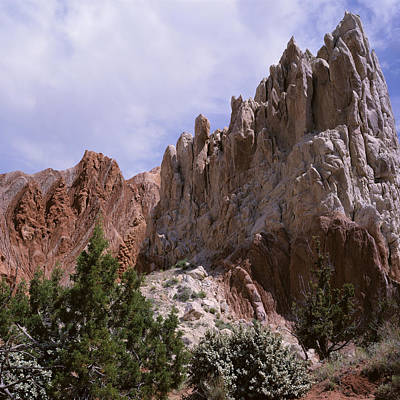 Photograph - Cottonwood Spires 2-sq by Tom Daniel