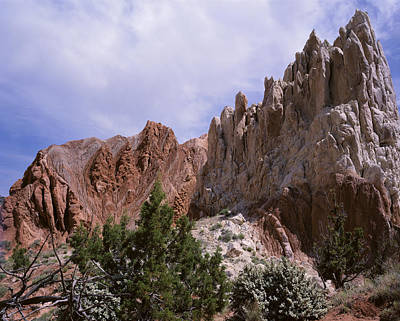 Photograph - Cottonwood Spires 2 by Tom Daniel