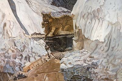 Mountain Lion Painting - Cougar And Cub by Shara  Wright