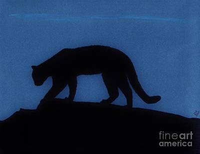 Drawing - Cougar - At - Night by D Hackett