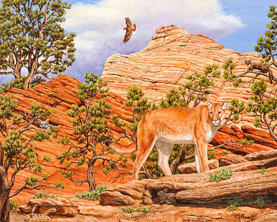 Red Tail Hawk Painting - Cougar - Don't Move by Crista Forest