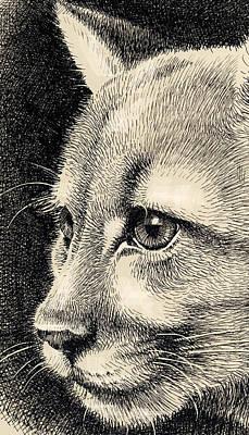 Digital Art - Cougar Eye by Mamoun Sakkal