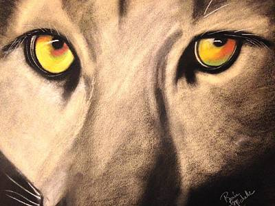 Drawing - Cougar Eyes by Renee Michelle Wenker