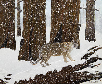 Painting - Cougar Stare  by L J Oakes