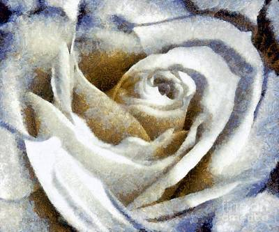 Photograph - Country Blues White Rose by Janine Riley