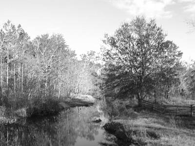 Photograph - Country Calm Black And White by Cheryl Waugh Whitney