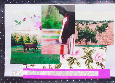 Country Collage 1 Art Print