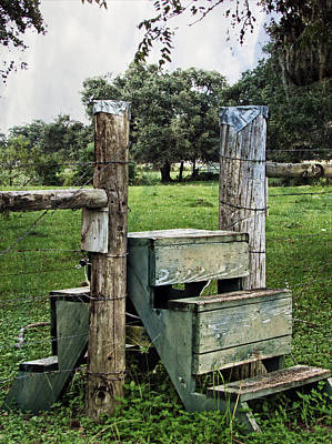 Photograph - Country Farm Fence Stile Crossing by Ella Kaye Dickey
