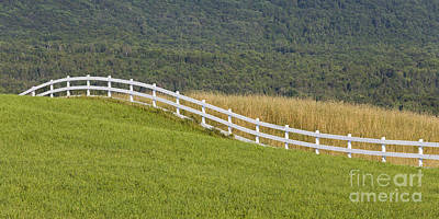 Photograph - Country Fence by Alan L Graham
