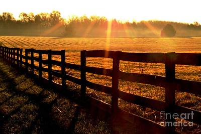 Country Fence Art Print by Carlee Ojeda