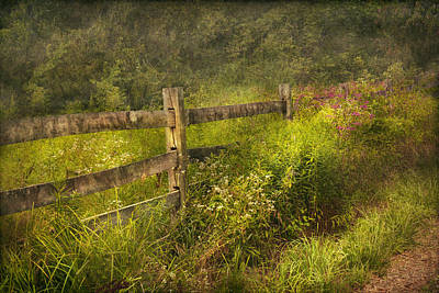 Country - Fence - County Border  Art Print by Mike Savad