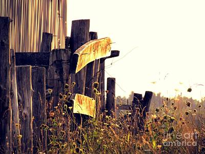 Photograph - Country Fence by France Laliberte