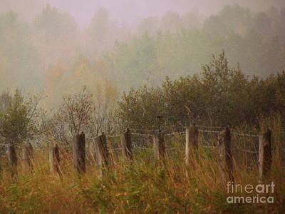 Photograph - Country Fog by France Laliberte