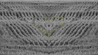 Country Heart Art Print