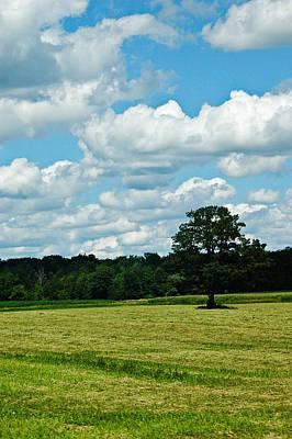 Photograph - Country Horizon 2 by Rhonda Barrett
