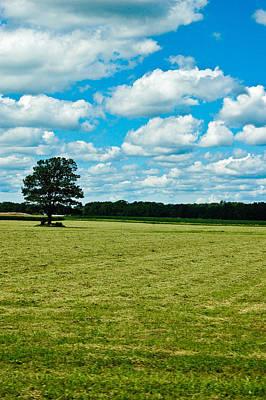 Photograph - Country Horizons 1 by Rhonda Barrett