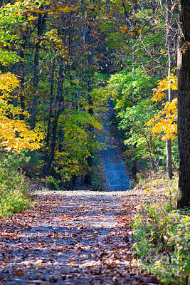 Country Lane Art Print by Deb Kline