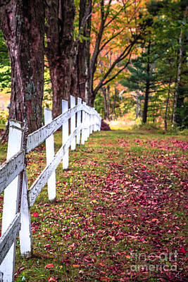 White Fence Photograph - Country Lane Fall Foliage Vermont by Edward Fielding
