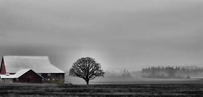 Photograph - Country Morning by Don Schwartz