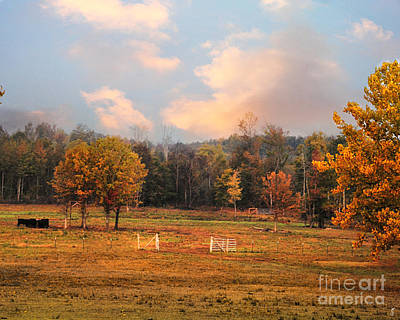 Photograph - Country Morning by Jai Johnson