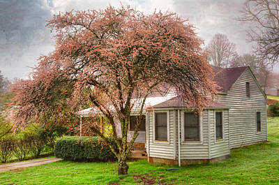Country Cottage Photograph - Country Pink by Debra and Dave Vanderlaan