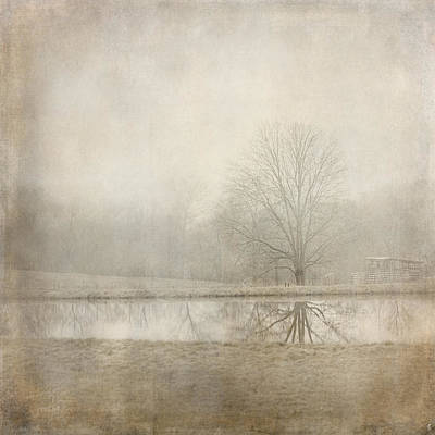 Photograph - Country Pond by Jai Johnson