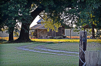 Photograph - Country Quiet by Linda Brown