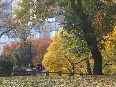 Art Print featuring the photograph Country Ride In The City by Barbara McDevitt