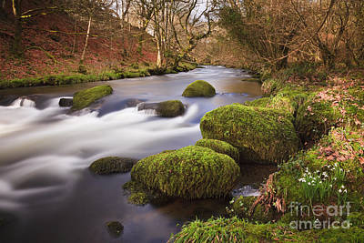 Country River Scene Wales Print by Pearl Bucknall
