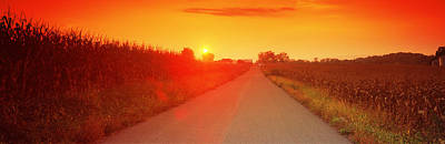 Country Road At Sunset, Milton Art Print