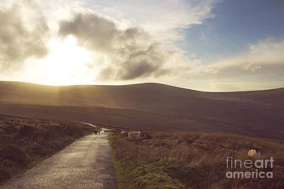 Photograph - Country Road Dublin Mountains by Catherine MacBride