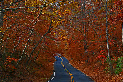 Art Print featuring the photograph Country Road by Andy Lawless