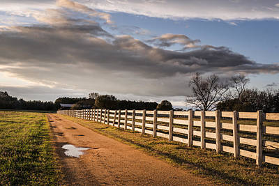 Photograph - Country Road In Alabama by Carol M Highsmith