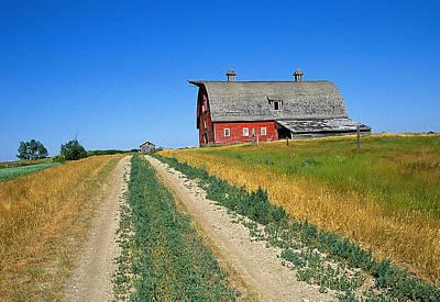 Country Road In Saskatchewan Art Print by Buddy Mays