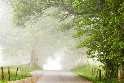 Country Road In The Fog Art Print