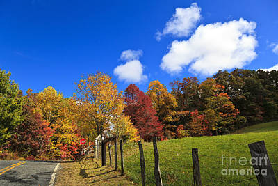 Photograph - Country Road by Jill Lang