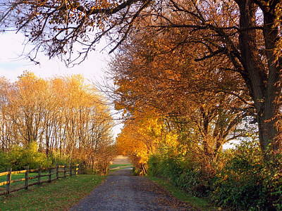 Photograph - Country Road by Joseph Skompski