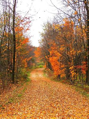 Country Road Art Print by Judy  Waller