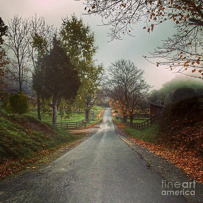 Photograph - Country Road by Kerri Farley