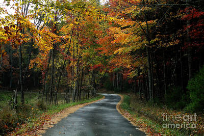 Photograph - Country Road by Melissa Petrey