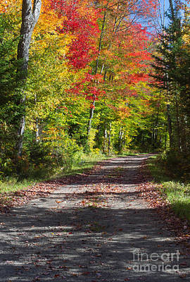 Photograph - Country Road Ny 3 by Chris Scroggins